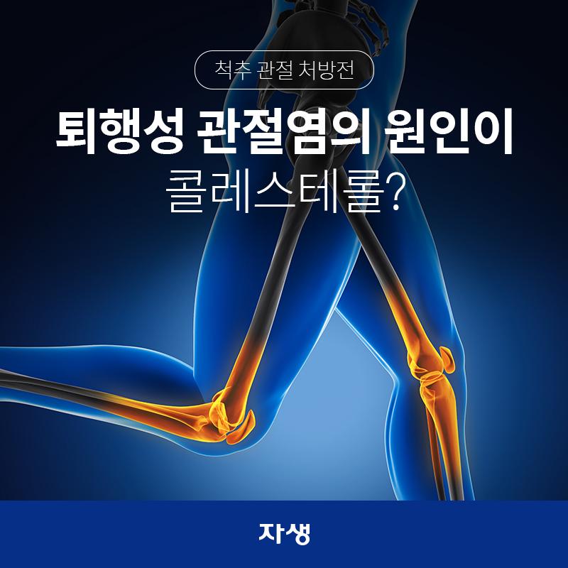 퇴행성 관절염의 원인이 콜레스테롤?  | 자생한방병원·자생의료재단
