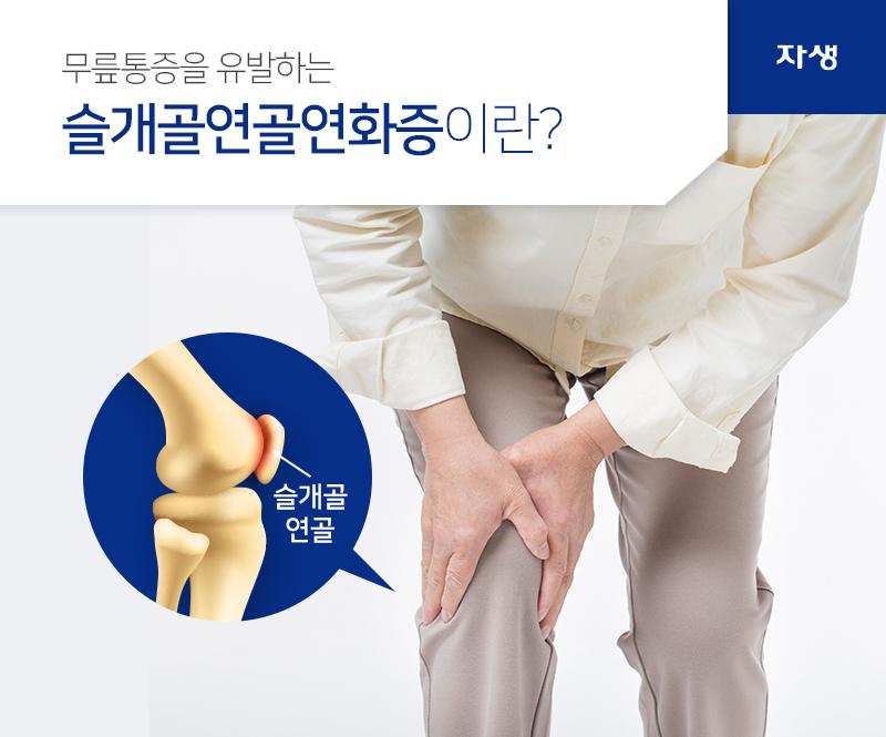 무릎통증을 유발하는 슬개골연골연화증이란? 슬개골 연골 | 자생한방병원
