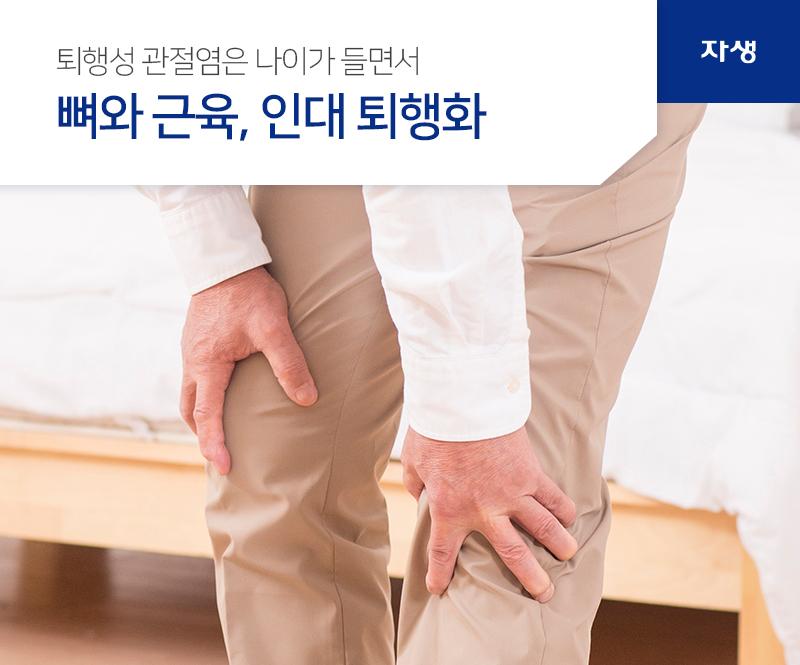 퇴행성 관절염은 나이가 들면서 뼈와 근육, 인대 퇴행화