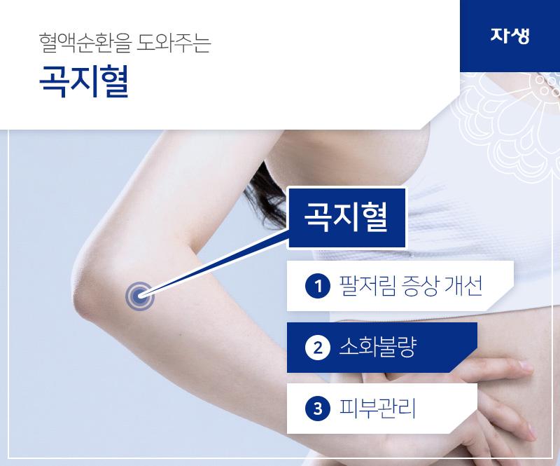 혈액순환을 도와주는 곡지혈 / 곡지혈 / 1 팔저림 증상 개선 2 소화불량 3 피부관리 | 자생한방병원ㆍ자생의료재단