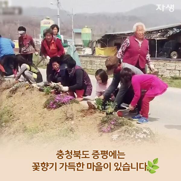 자생의료재단 자생한방병원 별다방! 별걸 다 해주는 고향닥터 - 꽃향기 가득한 통미마을에 사는 ㄱ자 김명옥 어머니02